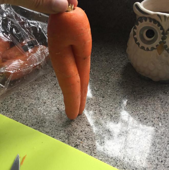 Подборка снимков самой соблазнительной моркови
