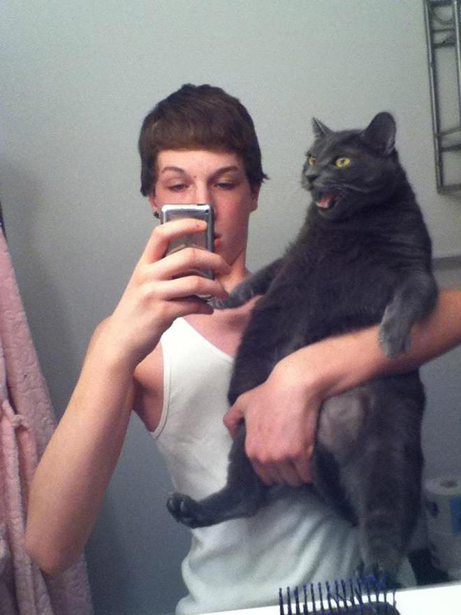 Котики, которые не любят эти ваши глупые селфи