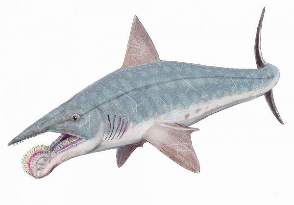 Удивительные и жуткие доисторические создания