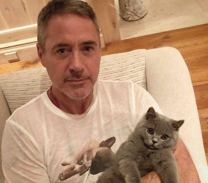 Знаменитости, которые без ума от своих кошек