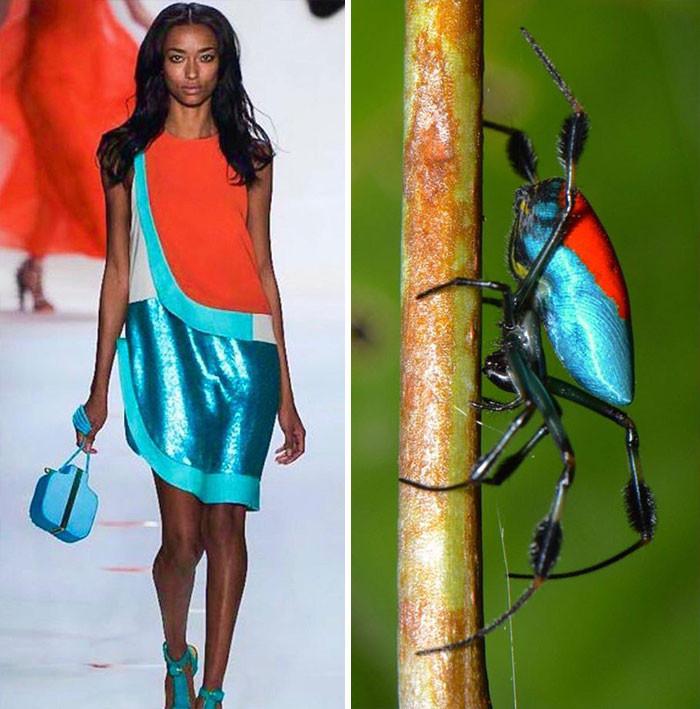 Мода очень часто черпает вдохновение у природы