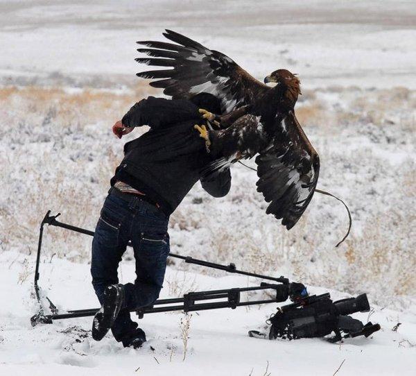 Интересные снимки покажут мощь и силу природы