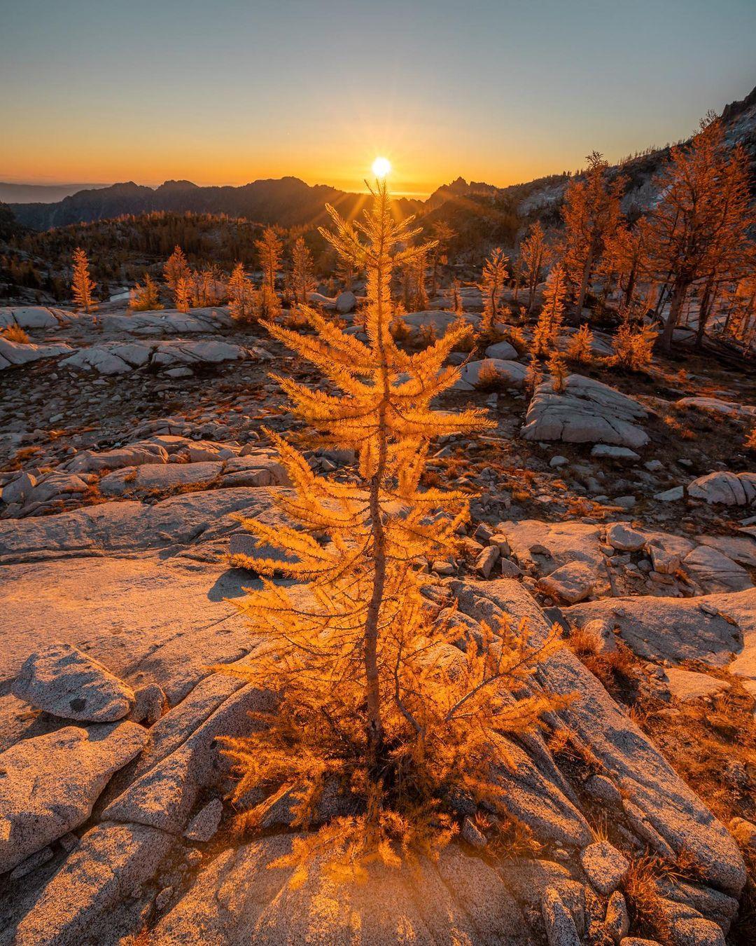 Природа и путешествия на снимках Скотта Кранца