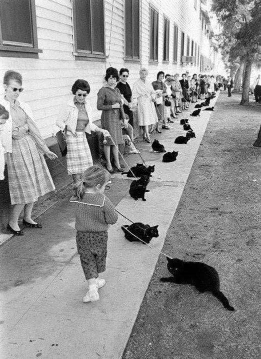 Редкие архивные фотографии прошлых лет