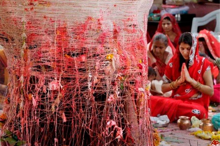 Почему мужчинам в Индии приходиться жениться на деревьях?