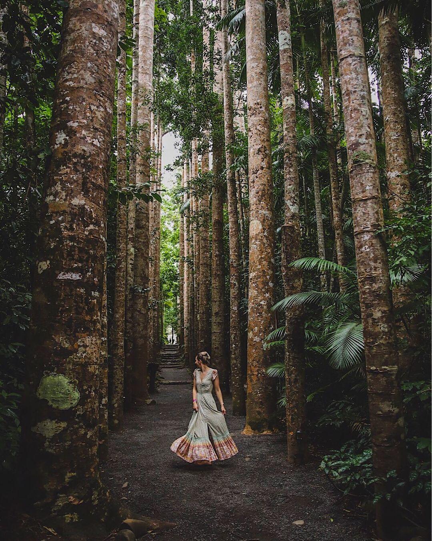 Заброшенный испанский замок в австралийском тропическом лесу