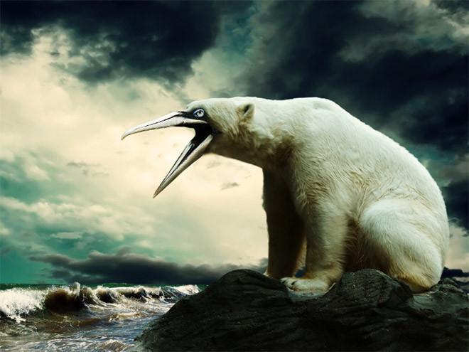 Как выглядели бы медведи, если бы у них были клювы?