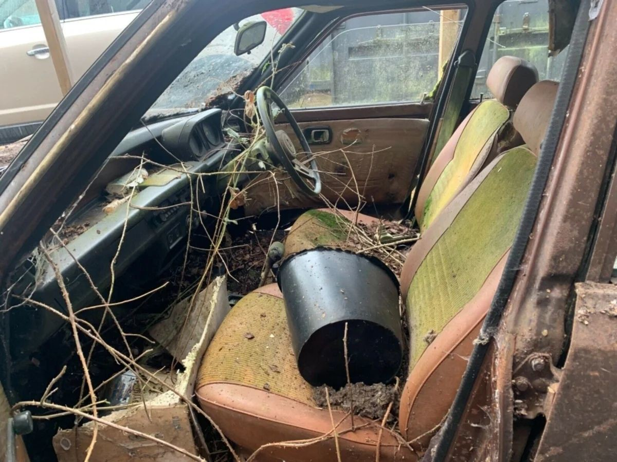 Автомобиль Honda Civic, простоявший в саду более 30 лет