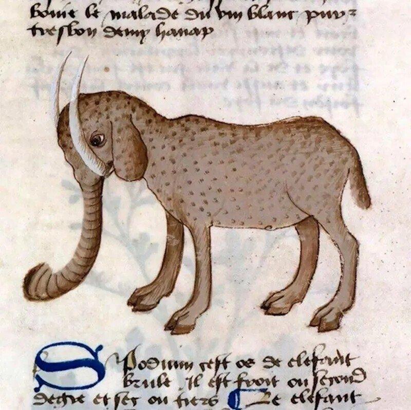 Как в Средневековье художники изображали слонов