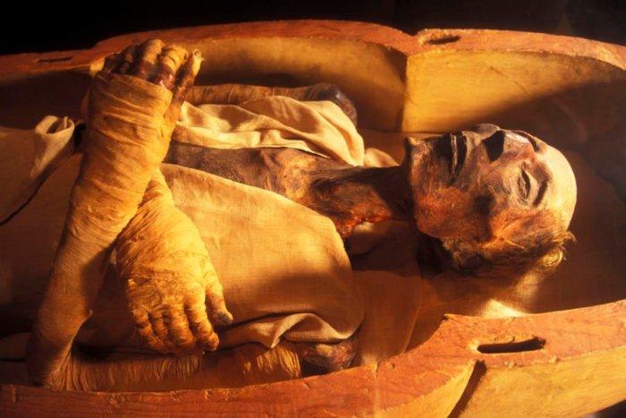 Что происходит с организмом человека после 100 лет в гробу?