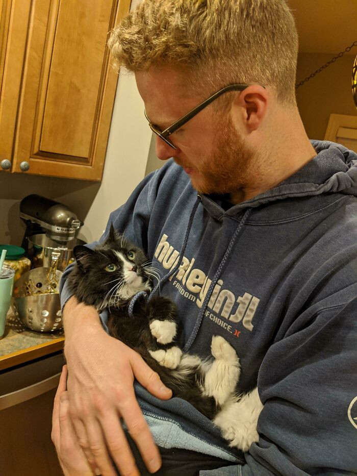 Домашние животные смотрят на своих хозяев с искренней любовью Животные