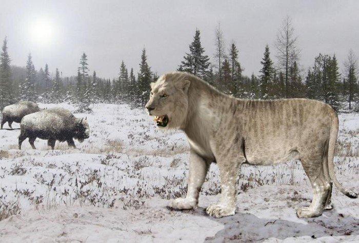 Животные, которые полностью исчезли с лица Земли
