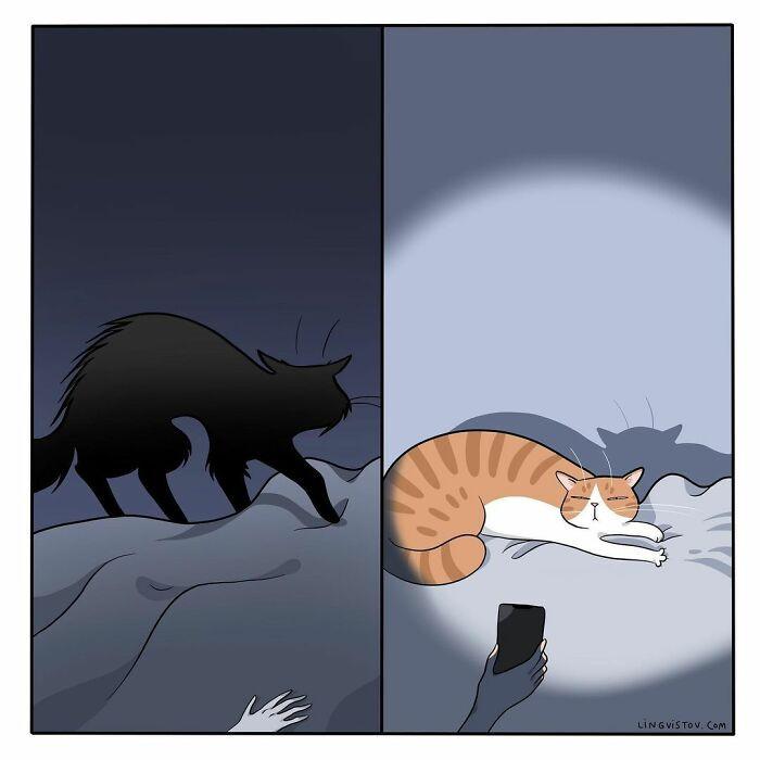 Художник описывает повседневную жизнь с котиками в комиксах