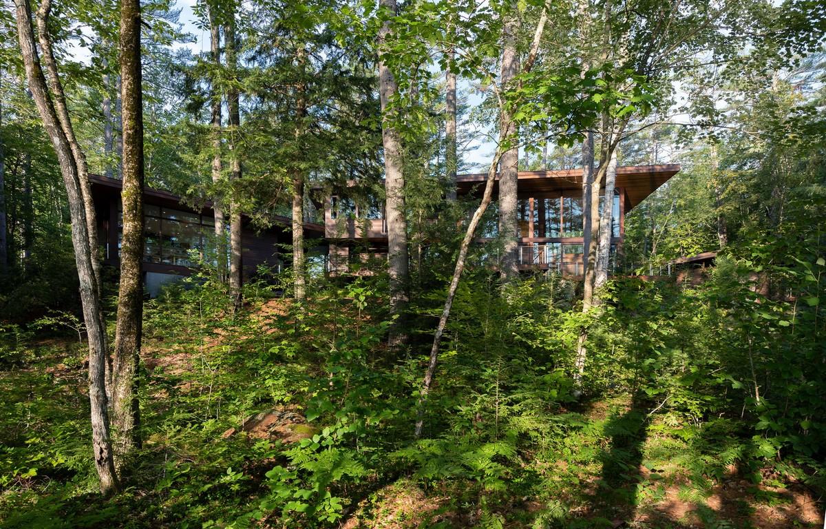 Загородная резиденция в лесу на склоне холма в США