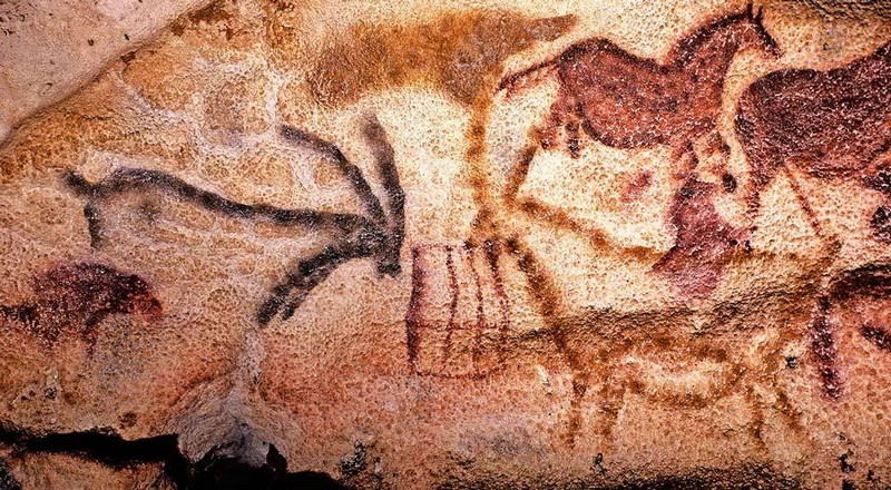 Примечательные открытия, которые изменили представления об эволюции человека