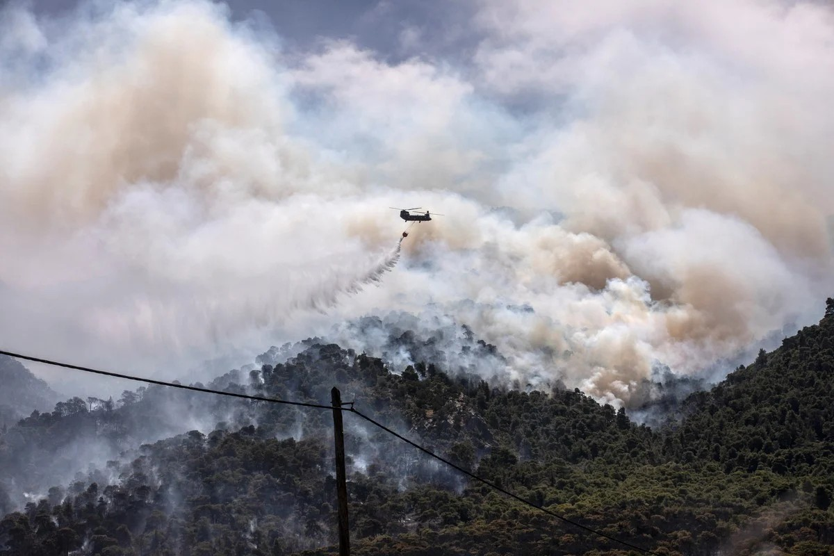 Мощный лесной пожар в Греции, уничтоживший десятки домов