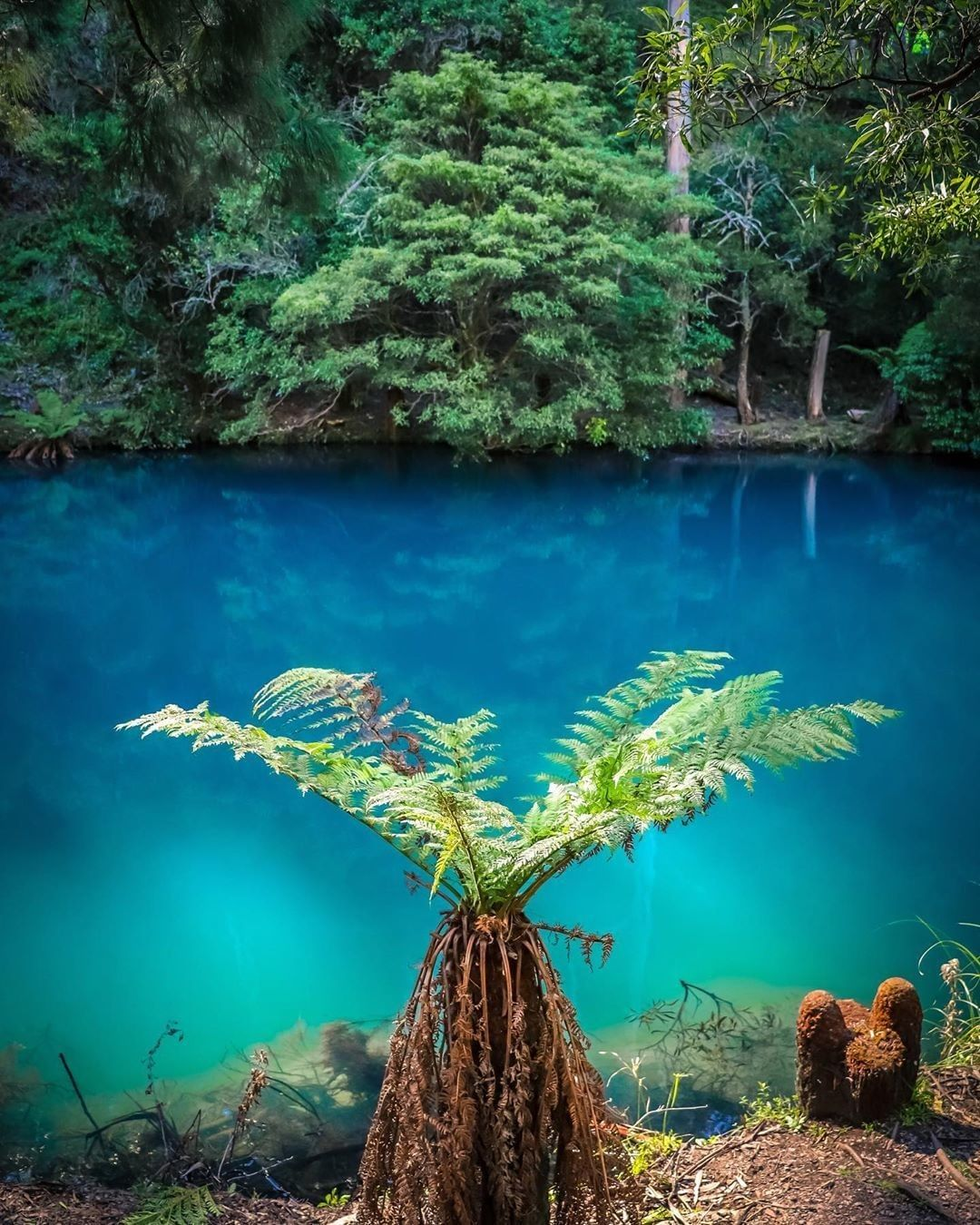 Австралийские пещеры и завораживающая лагуна с бирюзовой водой