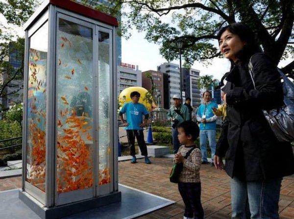Примеры интересных дизайнерских решений в городах