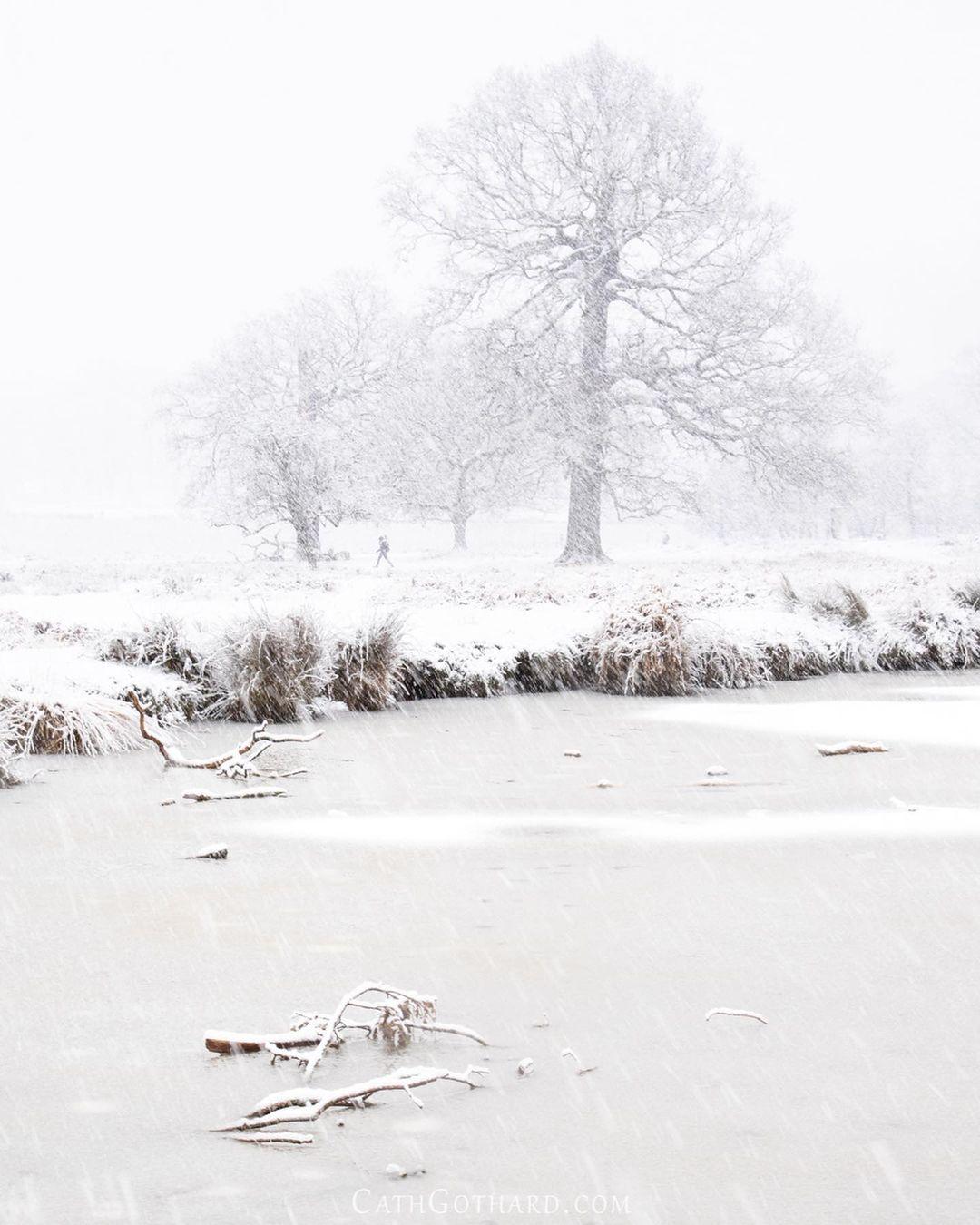 Красота природы на снимках Кэт Готард