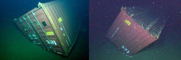 Интересные и немного пугающие снимки подводных объектов