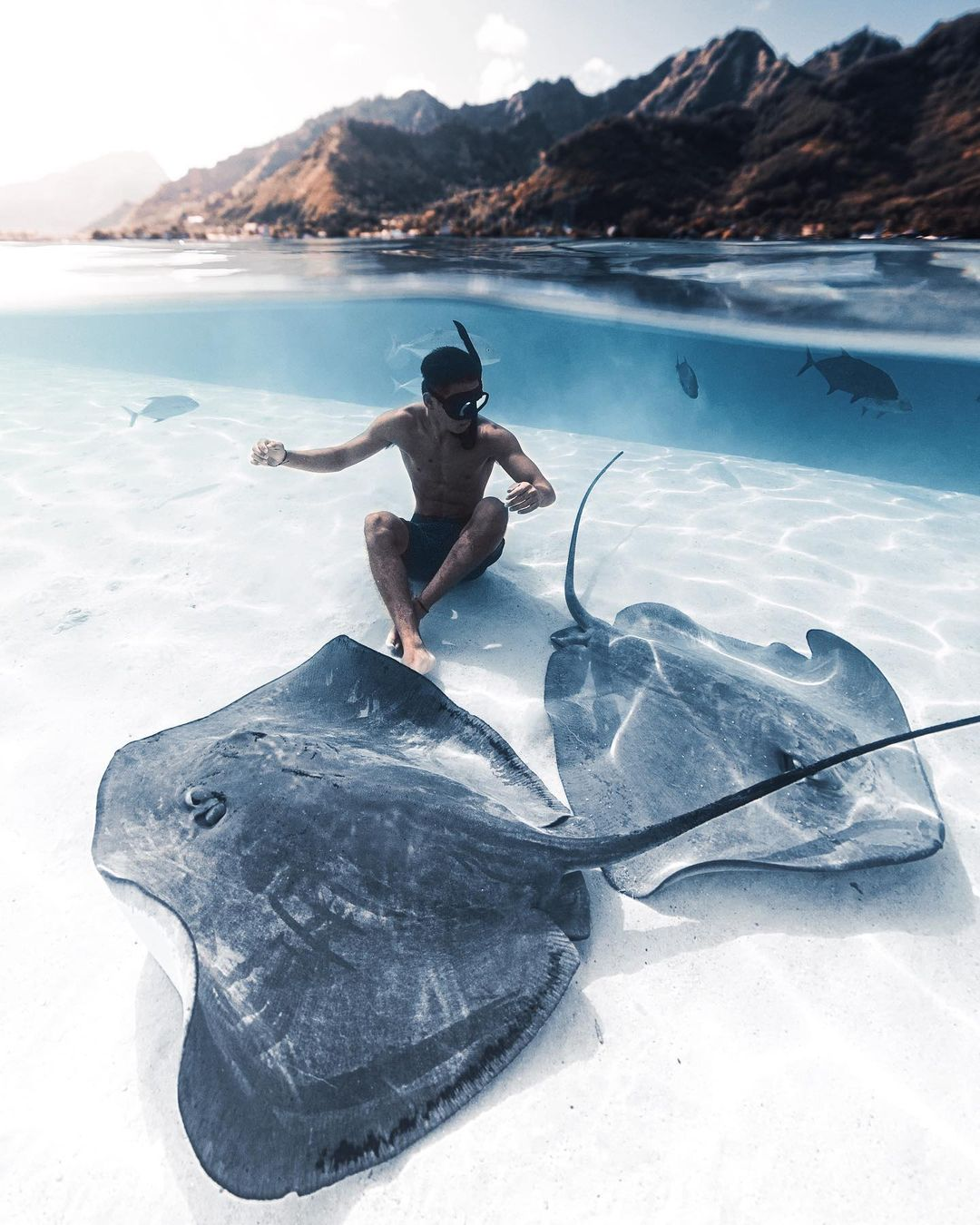 Удивительные подводные снимки от Нолана Омура