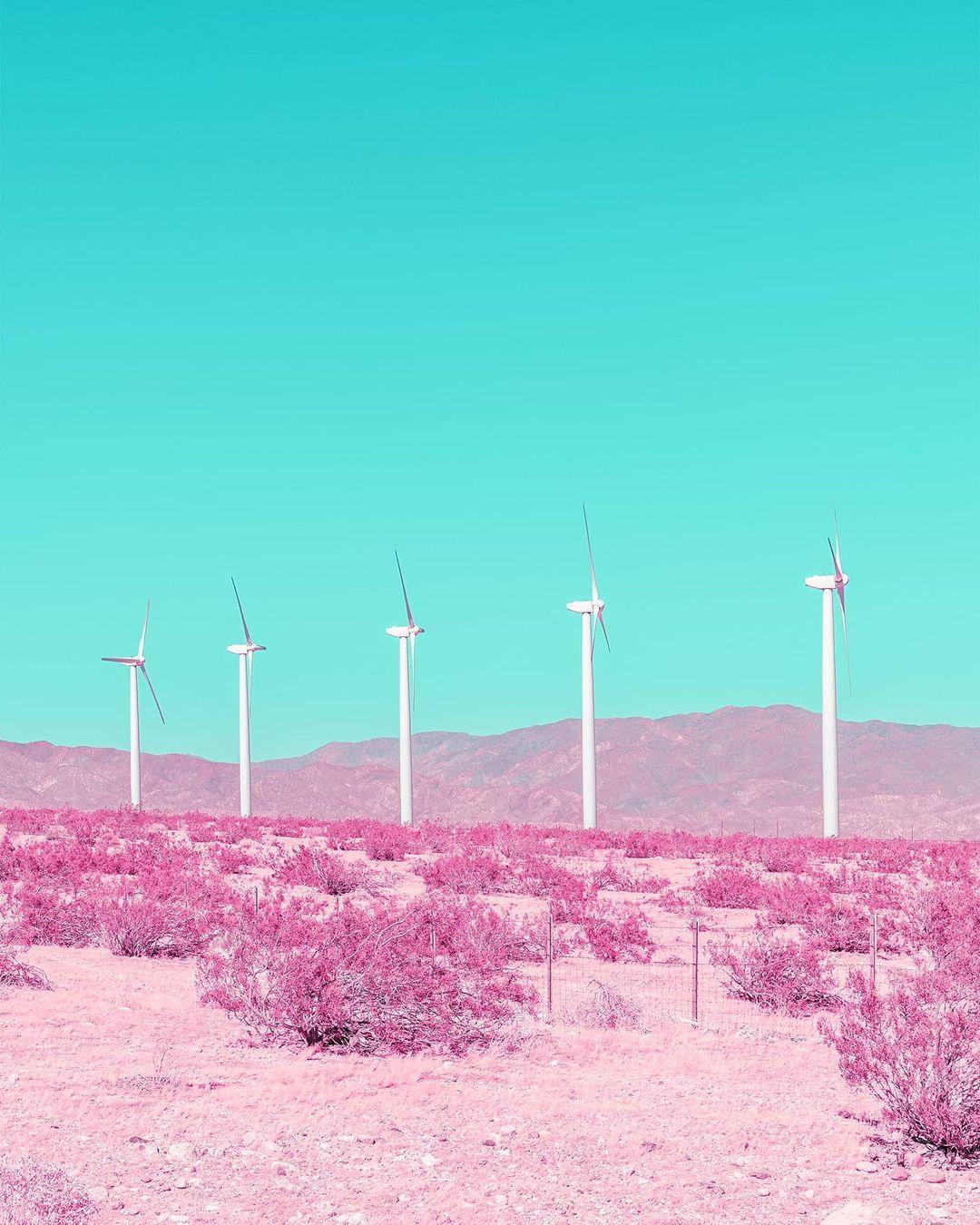 Яркие и красочные снимки от Тома Виндекнехта