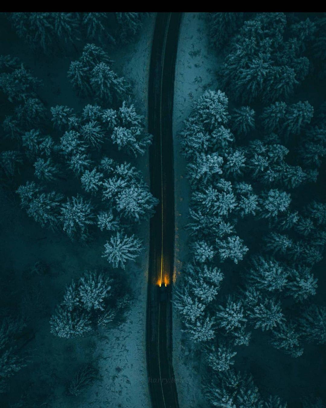 Увлекательные снимки из путешествий Гарри Томляновича