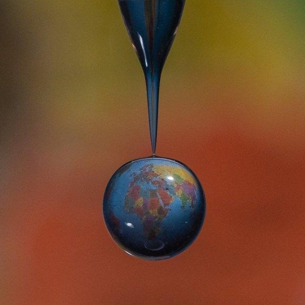 Интересные макрофотографии покажут мир через микроскоп