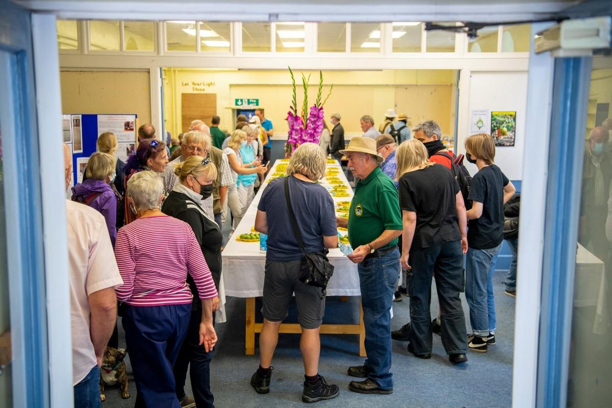 Конкурс на самую большую ягоду крыжовника в Йоркшире