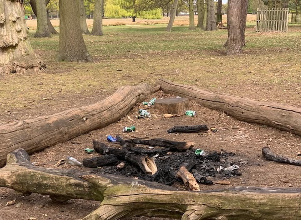 Удручающее влияние мусора на дикую природу в лондонских парках