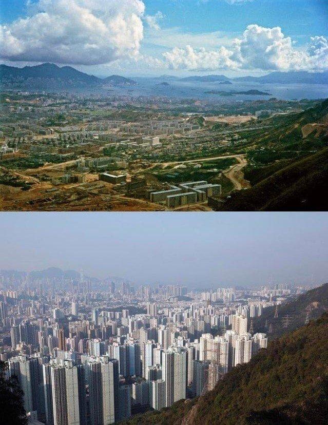 Эти снимки показывают, что всё в мире познаётся в сравнении
