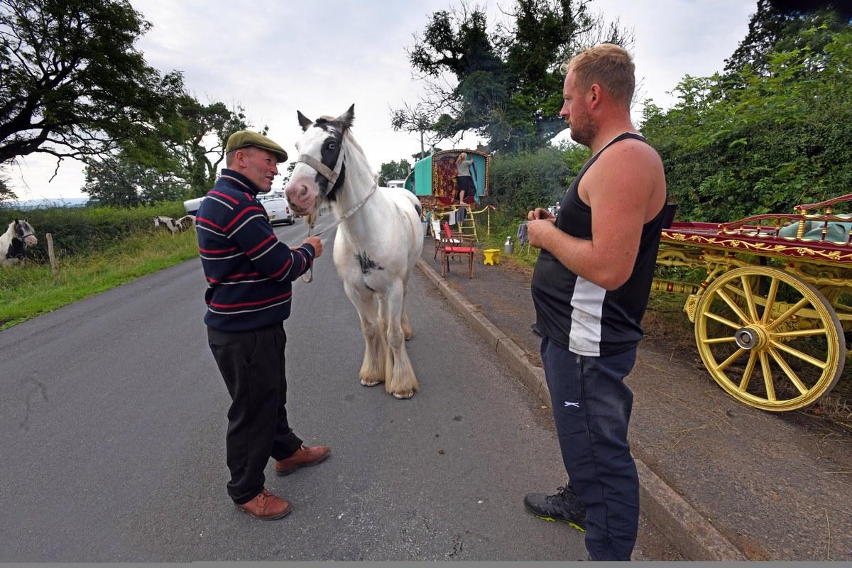 Тысячи цыган собрались на ярмарку лошадей в Эпплби
