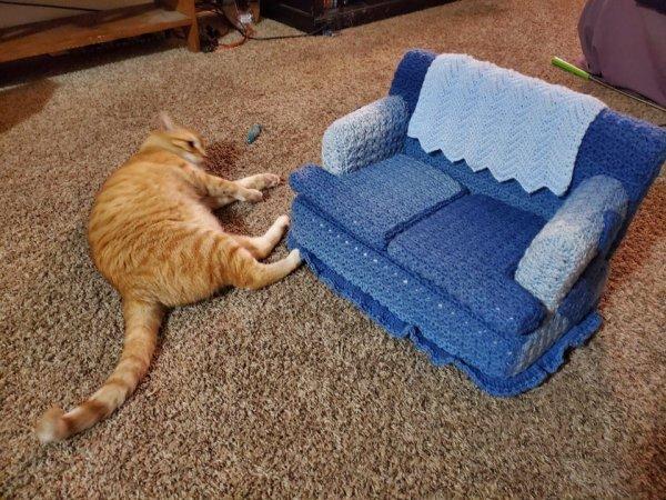 Интересные изобретения и дизайнерские решения, сделанные для животных