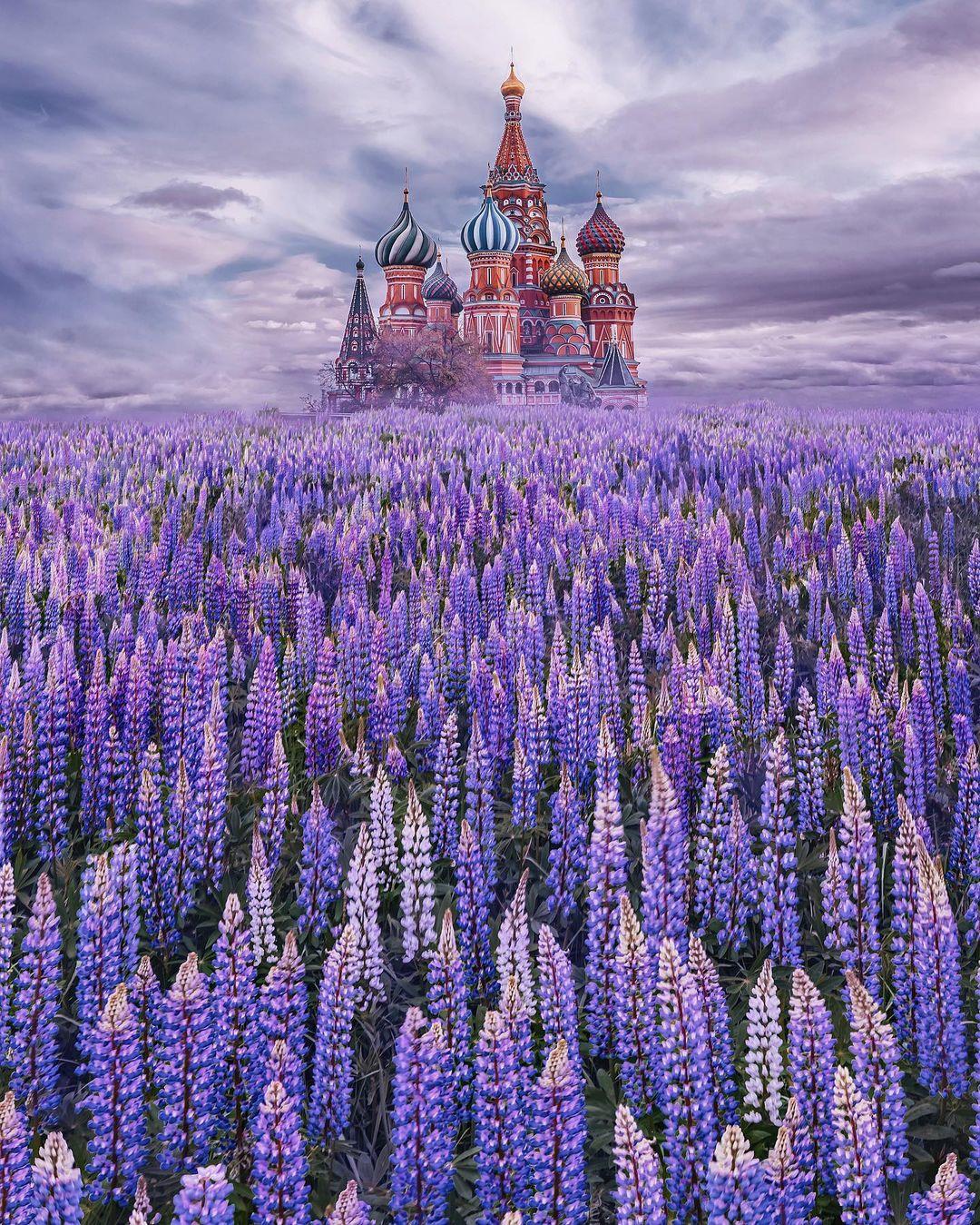 Путешествия и сказочные снимки Кристины Макеевой