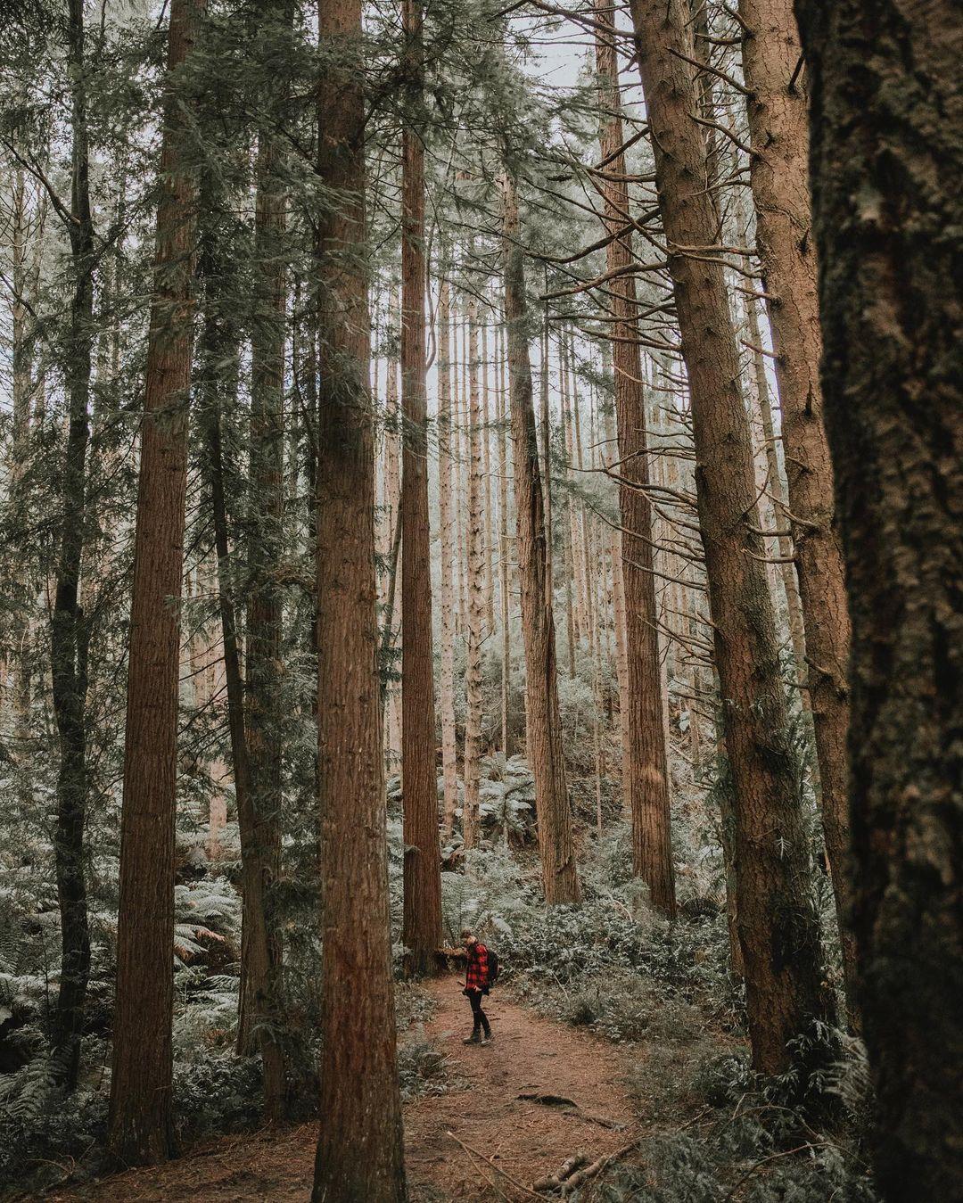 Путешествия и приключения на снимках Александра Джейсона
