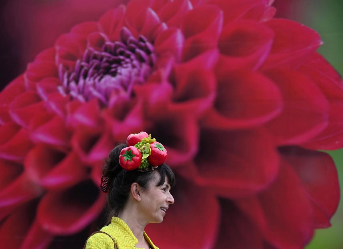 Цветочная выставка садов и цветов Chelsea Flower Show 2021