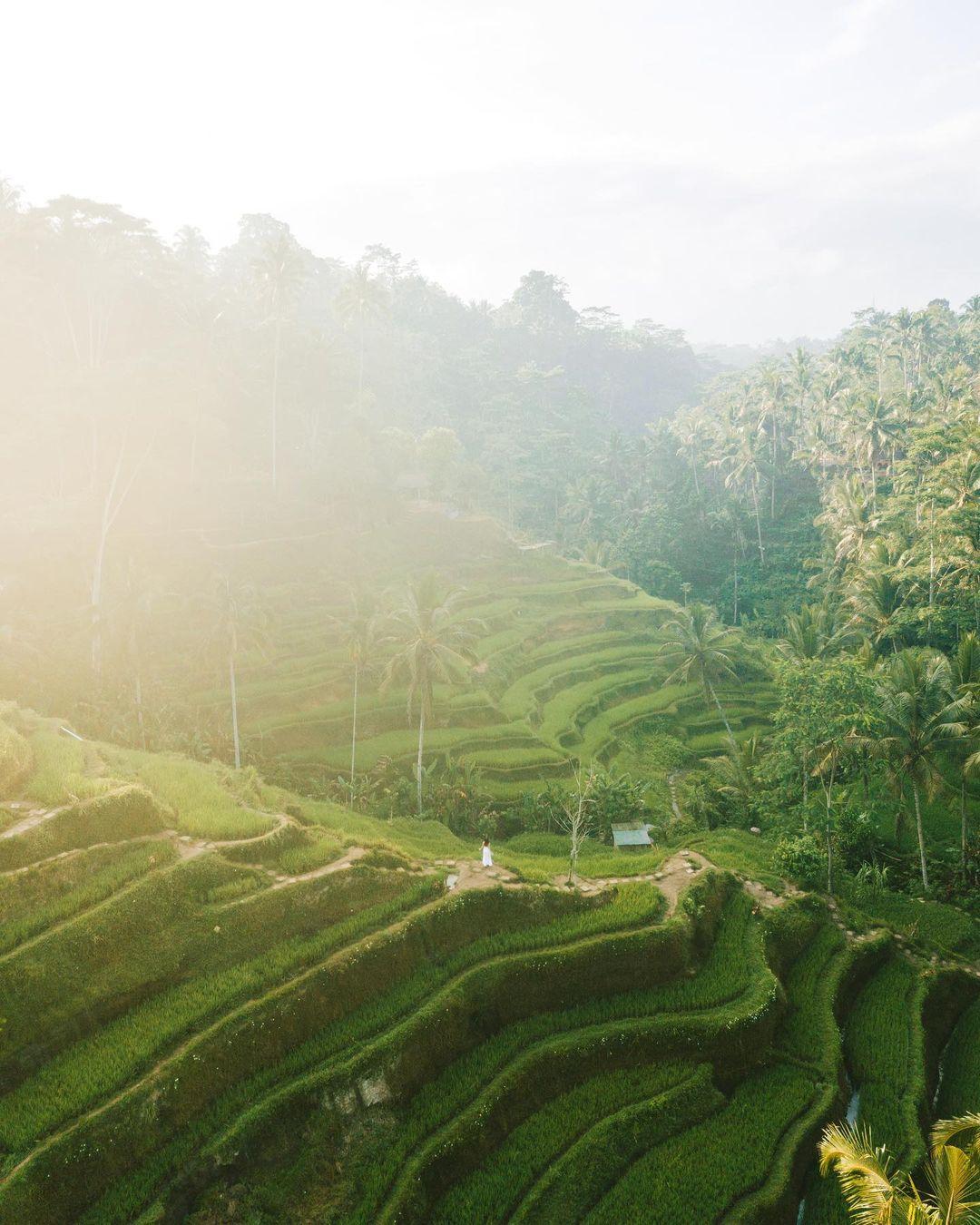 Путешествия и приключения на снимках Коди Дрю Дункана